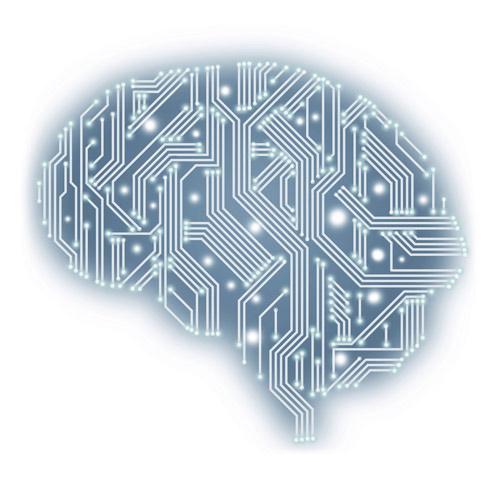 UB-Brain
